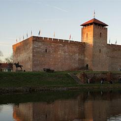 Gyula vár