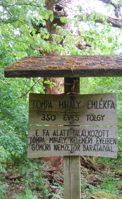 tompa-fa
